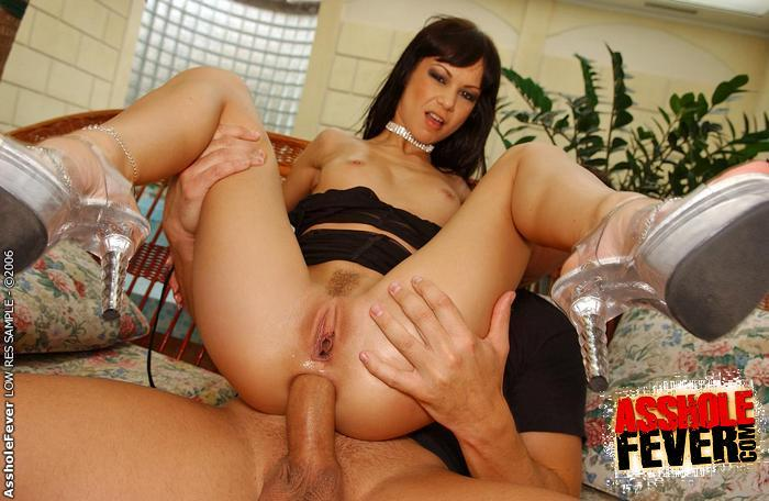 Can crow hard anal angelina excellent