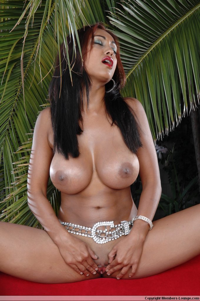 Porn stars with perfect tits