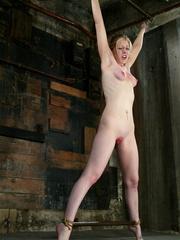 Bdsm xxx. Haley Scott likes to get tied up - Unique Bondage - Pic 9