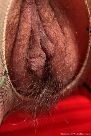 Hairy nude. Try and sneak a peak through - XXX Dessert - Picture 8