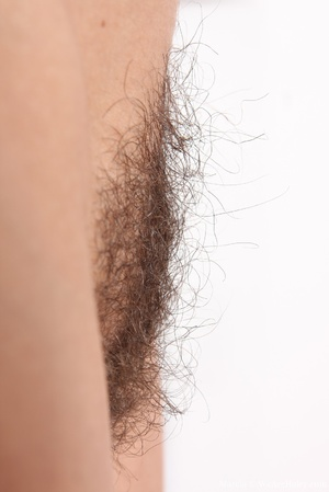 Sexy hairy. Sit back and relax as the st - XXX Dessert - Picture 9