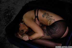 Squirting orgasm. Slut in a suit case wa - Picture 1