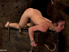 Girl next door bound ass up.  Double - Unique Bondage - Pic 9