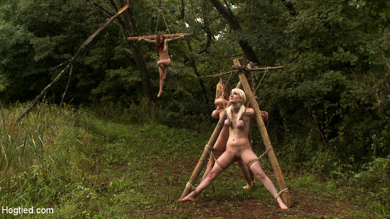 The Dig: The conclusion, A BDSM Abduction - Unique Bondage - Pic 14