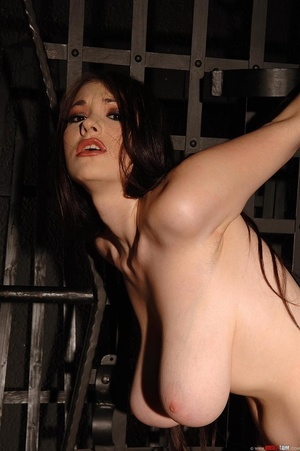 Busty beauty Anna Song tied up and restr - Picture 14