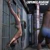 Bondage toons. Captured assasin is tortured!