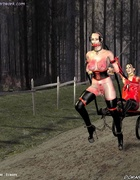 Bondage toons. Busty slave girls harnessed like a pony!