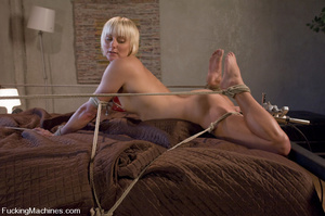 Women fucking machines. Hot blonde bound - XXX Dessert - Picture 5