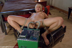 Women fucking machines. Hot blonde bound - XXX Dessert - Picture 9