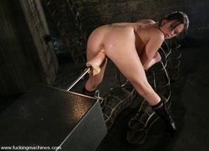 Sexmachine. Horny Tory Lane gets machine - XXX Dessert - Picture 4