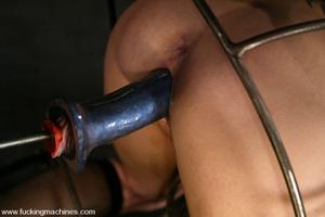 Sexmachine. Horny Tory Lane gets machine - XXX Dessert - Picture 10
