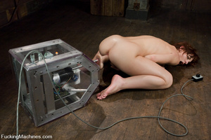 Fuck machines. Riley Shy gets machine fu - XXX Dessert - Picture 10