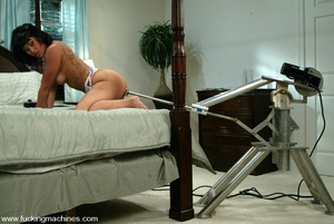 Girls sex machines. Fucking Machines. - XXX Dessert - Picture 4