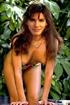Nude celeb porn. Hot celeb Sandra Bullock fucks and takes on warm gooey